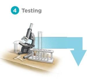 4 - testing