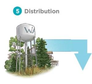 5 - distribution