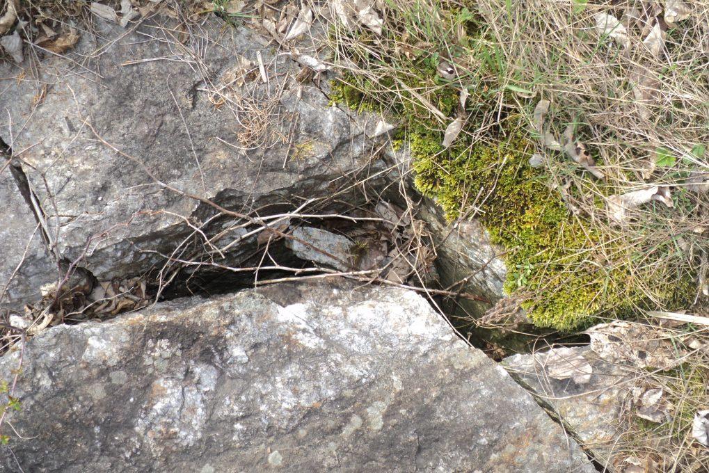 Fractured Bedrock