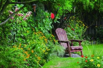 lush backyard with a chair