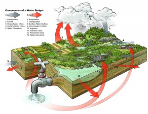 Components of a water budget